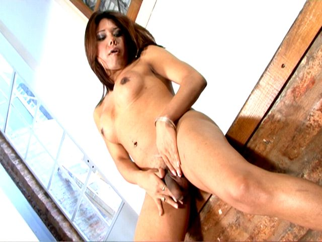 Inviting Dark-haired Shemale Damsel Selia Caressing Her Cupcakes And Getting Plumbed
